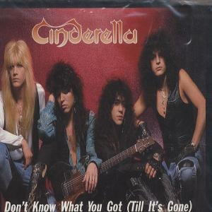 Cinderella: Don't Know What You've Got ('Till It's Gone)